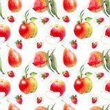 Modèle de poire d'Apple Photographie stock