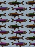 Modèle de poissons de Tilable Photos libres de droits