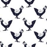 Modèle de poulet de Bnw illustration libre de droits