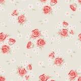 Modèle 2 de Rose Photographie stock
