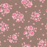 Modèle 1 de Rose Image stock