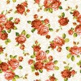 Modèle de rose, Photo stock
