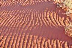 Modèle de sable dans le désert Photos libres de droits