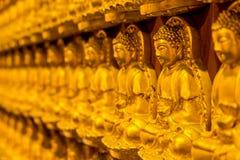 Modèle de sculpture de découpage en bois d'or en Bouddha sur le mur chinois de temple Image libre de droits