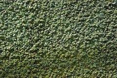 Modèle de texture de mur Image libre de droits