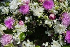 Modèle de texture naturelle de fond de fleurs photos stock