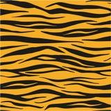 Modèle de Tiger Animal Print Seamless Vector ou concept sans couture de fond de vecteur Image libre de droits