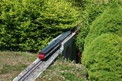 Modèle de train entre les sapins miniatures Image stock