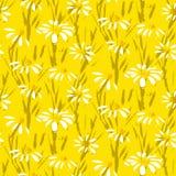 Modèle de vecteur avec les fleurs tirées par la main de marguerite Image libre de droits