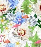 Modèle des flamants et des flowes exotiques Photo stock