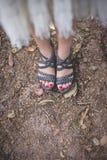 Modèle des pieds sur les feuilles sèches images stock