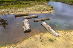 Modèle des rondins en tant que pierres de progression dans l'étang Photographie stock libre de droits