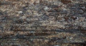 Modèle du fond en bois de texture photo stock