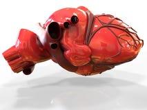 Modèle du rendu humain artificiel du coeur 3d Photographie stock libre de droits