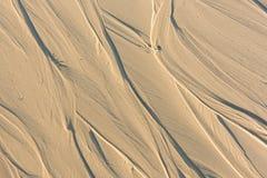 Modèle du sable après marée basse à la plage abrégez le fond photo libre de droits