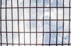 Modèle en bambou de gril pour le fond de ciel bleu de pépinière d'usine de toit Photo stock