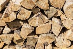 Modèle en bois Photos libres de droits