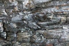 Modèle en bois carbonisé par noir Fond brûlé de texture de bois de construction Images stock