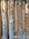Modèle en bois complexe Photo stock