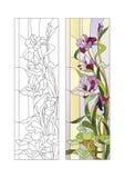 Modèle en verre souillé avec des gladioli Image libre de droits