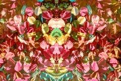 modèle et fond de fleurs colorés de vue supérieure Image libre de droits
