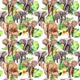 Modèle exotique d'animal sauvage d'éléphant dans un style d'aquarelle Illustration Stock