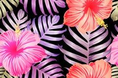 Modèle exotique rouge-rose illustration stock
