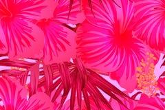 Modèle exotique rouge-rose illustration de vecteur