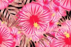 Modèle exotique rouge-rose illustration libre de droits