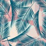 Modèle exotique sans couture avec des plantes tropicales Photo libre de droits