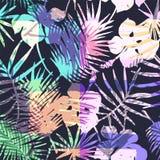 Modèle exotique sans couture avec la paume tropicale dans la couleur lumineuse Photographie stock libre de droits
