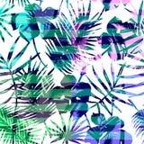 Modèle exotique sans couture avec la paume tropicale dans la couleur lumineuse Photos stock