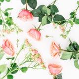 Modèle fait de roses, bourgeons et feuilles roses sur le fond blanc Configuration plate, vue supérieure Configuration des fleurs  Photographie stock