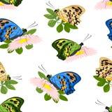Modèle floral à la mode des fleurs, des feuilles de vert et de coloré roses Image stock