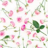 Modèle floral élégant fait de roses, bourgeons et feuilles roses sur le fond blanc Configuration plate, vue supérieure Photographie stock