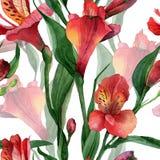 Modèle floral illustration stock