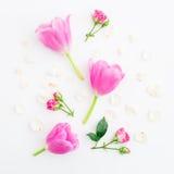 Modèle floral avec des fleurs, des roses et des pétales de tulipe d'isolement sur le fond blanc Configuration plate, vue supérieu Photographie stock