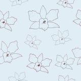 Modèle floral avec des orchidées illustration stock