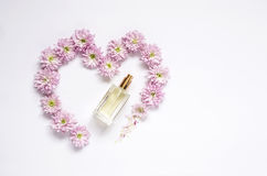 Modèle floral avec plusieurs fleurs colorées et bouteille de parfum Photographie stock libre de droits