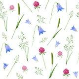 Modèle floral coloré avec les fleurs sauvages et les herbes illustration de vecteur