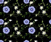 Modèle floral d'été avec les fleurs bleues et blanches Illustration de vecteur, fond transparent Image stock