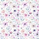 Modèle floral d'aquarelle lilic sans couture de ressort sur un fond blanc Fleurs roses et roses, décoration de weddind image libre de droits