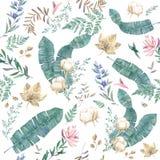 Modèle floral d'usine de coton Feuilles d'aquarelle et fleurs, ensemble tropacal Mariage, anniversaire, célébration, carte de voe illustration libre de droits