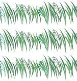 Modèle floral de fines herbes graphique de ressort lumineux d'herbe verte avec la main sans couture horizontale d'aquarelle de mo illustration stock