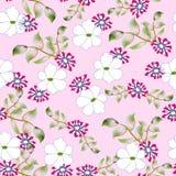 Modèle floral de fond sans couture Photos libres de droits