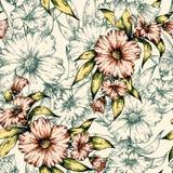 Modèle floral de vecteur Photographie stock libre de droits