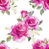 Modèle floral de vecteur d'aquarelle illustration libre de droits