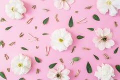Modèle floral des fleurs blanches et des feuilles sur le fond rose Fond floral Configuration plate, vue supérieure Image stock