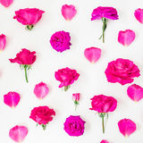 Modèle floral des roses, des bourgeons et des pétales roses sur le fond blanc Configuration plate, vue supérieure Photo stock