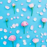 Modèle floral fait de bourgeons et pétales roses de roses sur le fond bleu Configuration plate, vue supérieure Composition en pri Photos libres de droits